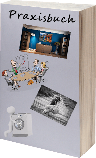 Ex Freund zurück - Praxisbuch