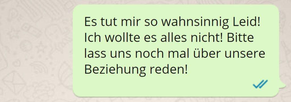 SMS an Ex Entschuldigung, es tut mir wahnsinnig Leid ....